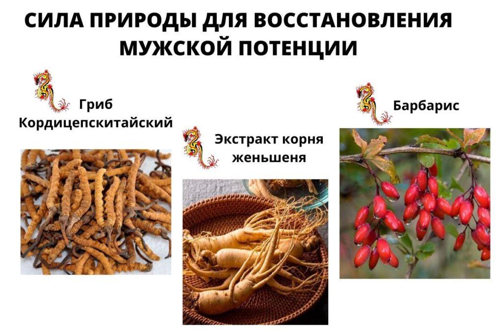 СЕКРЕТ ИМПЕРАТОРА состав