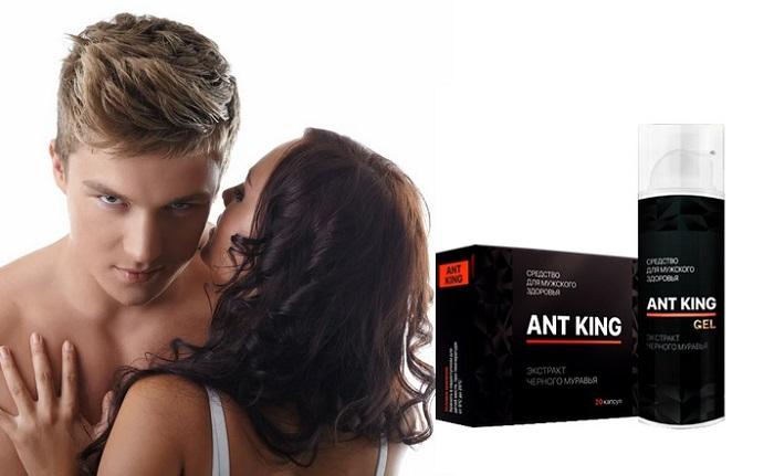 ANT KING (Ант Кинг)