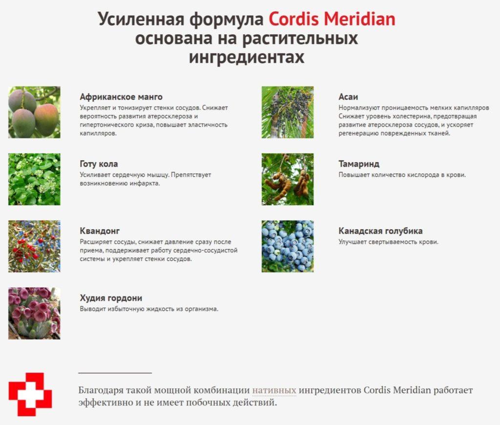 Капсулы Кордис Меридиан (Cordis Meridian) от гипертонии состав