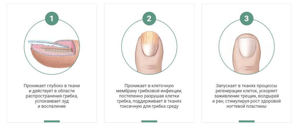 Мазь от грибка Миковизин как действует