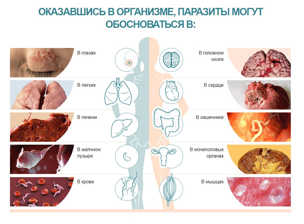 Лекарство Клинистил